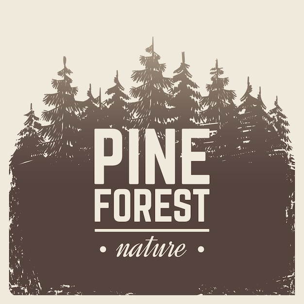 Sketch vintage nature pine and fir tree forest in misty fog Premium Vector