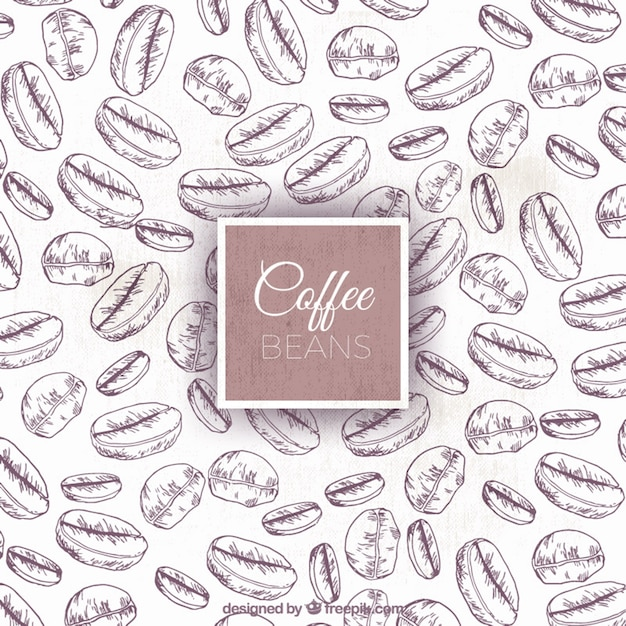Sketches of coffee beans background Free Vector