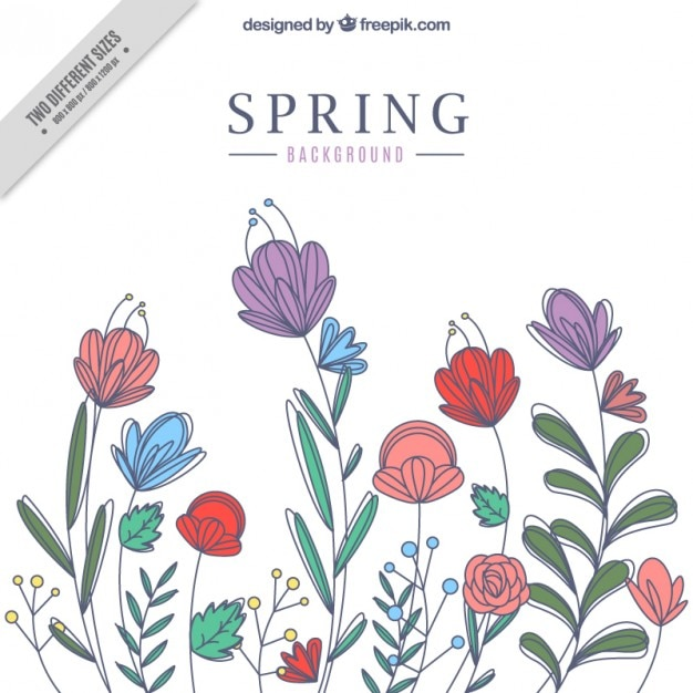 Sketches Flowers Spring Background Premium Vector
