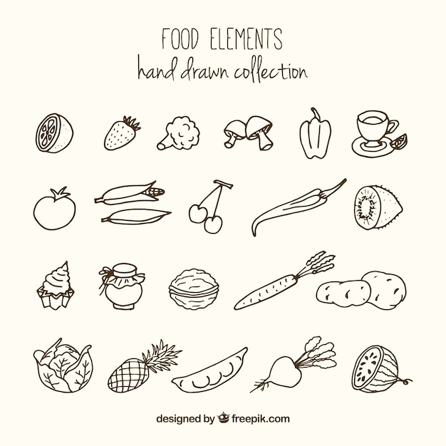 Sketches Variety Of Healthy Food Vector | Free Download