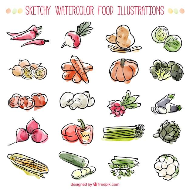 Sketches watercolor ingredients Free Vector