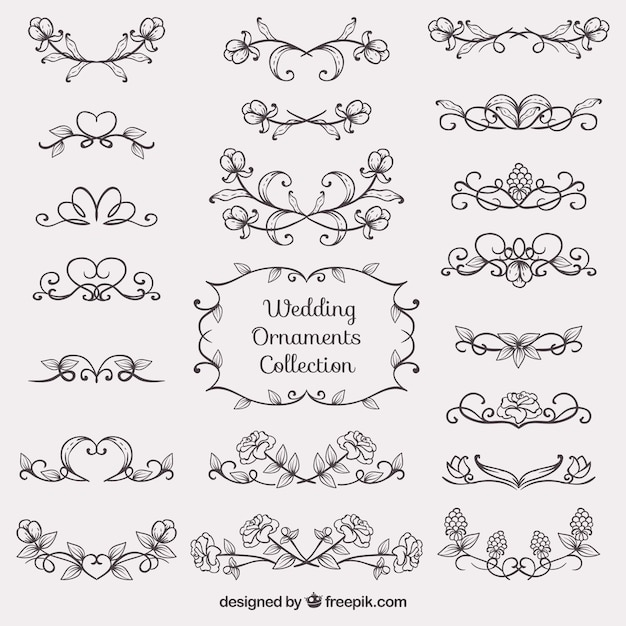 sketches wedding ornament collection vector
