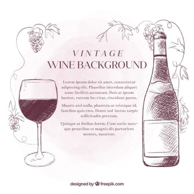 Sketches wine vintage background Free Vector