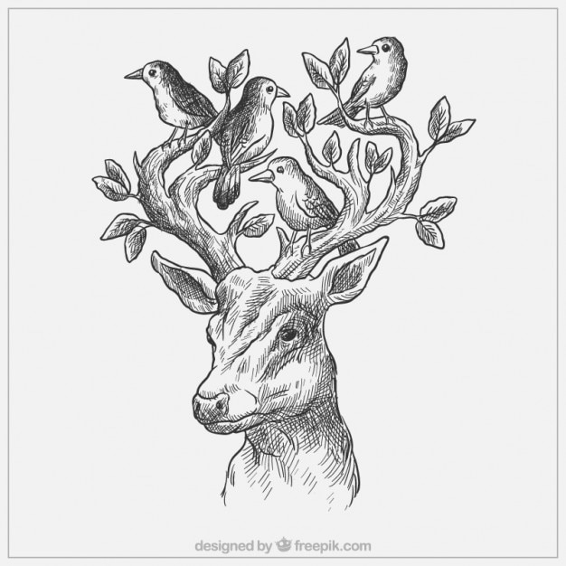 Sketchy deer with birds and leaves Free Vector