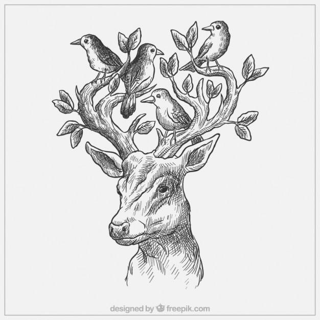 Cervi sketchy con uccelli e foglie Vettore gratuito