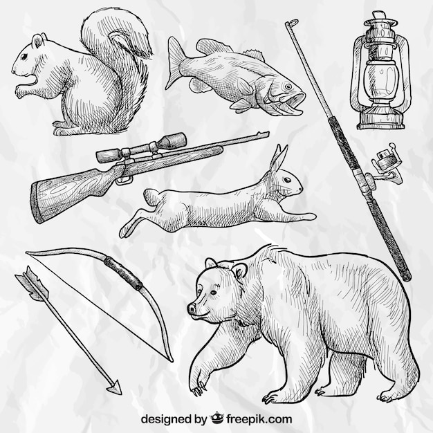 Sketchy forest animals and hunting weapons Free Vector