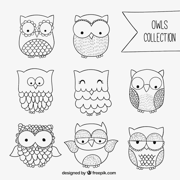 how to draw an owl tumblr