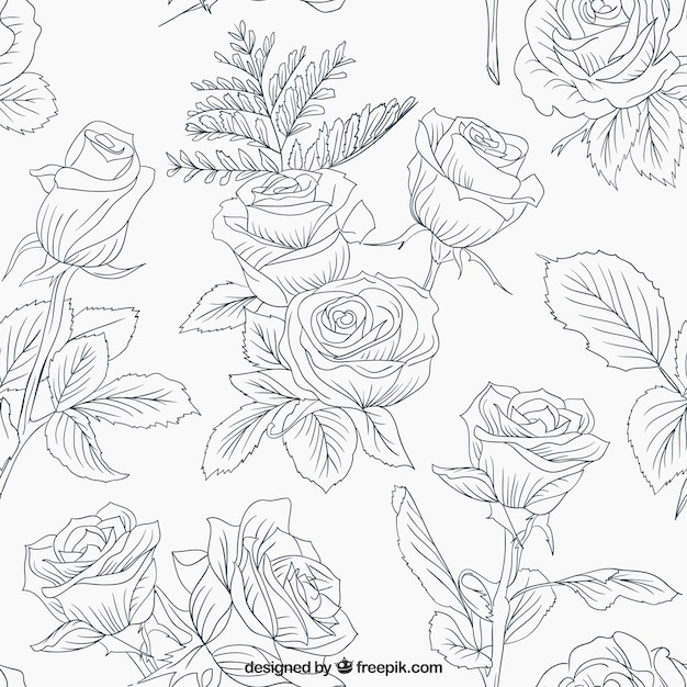 Sketchy roses and leaves pattern