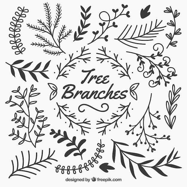 Sketchy tree branches Free Vector
