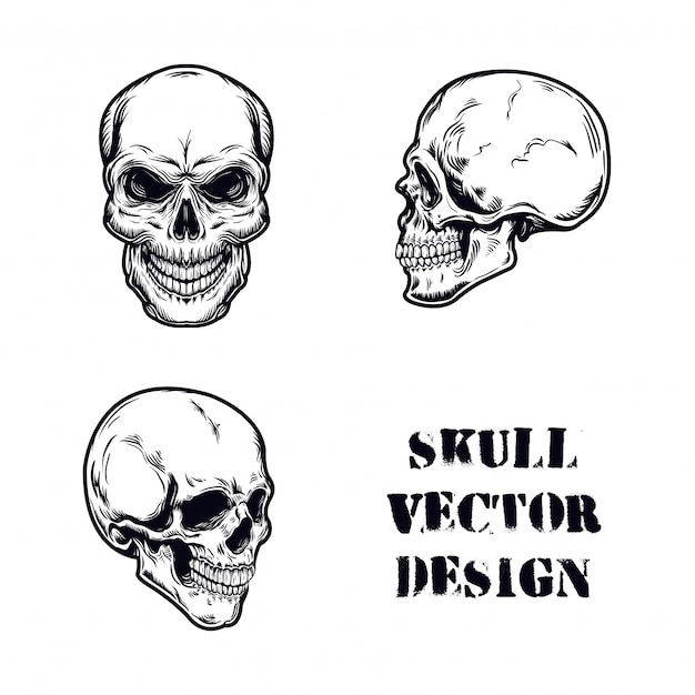 Skull set vector illustration Premium Vector