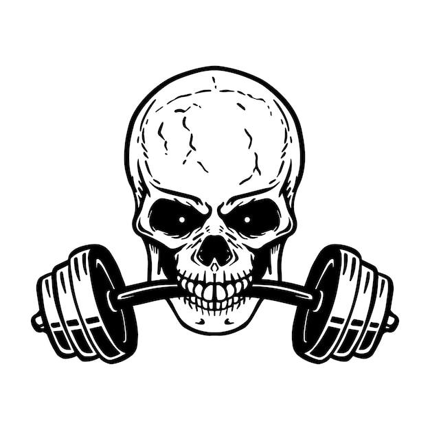 이빨에 바벨과 두개골. 체육관 로고, 라벨, 엠블럼, 사인, 포스터, 티셔츠 요소. 영상 프리미엄 벡터