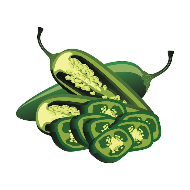 Slices of raw jalapeno pepper. vector illustration Free Vector