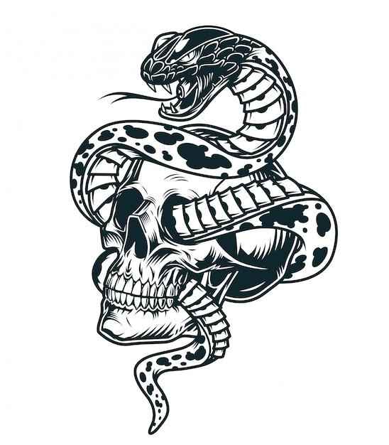 Serpente intrecciato con modello di teschio Vettore gratuito