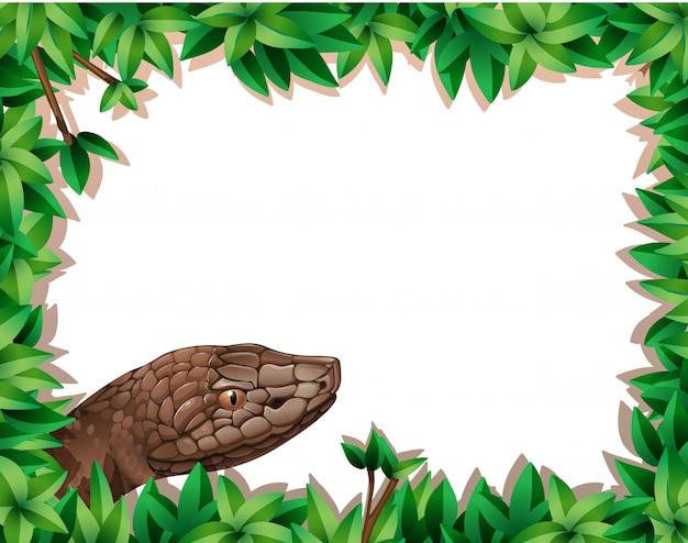 Snake on nature border Premium Vector