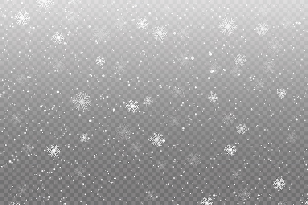 Snow is falling on transparent Premium Vector