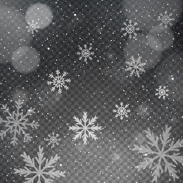 Snowflakes on a transparent bokeh background Free Vector