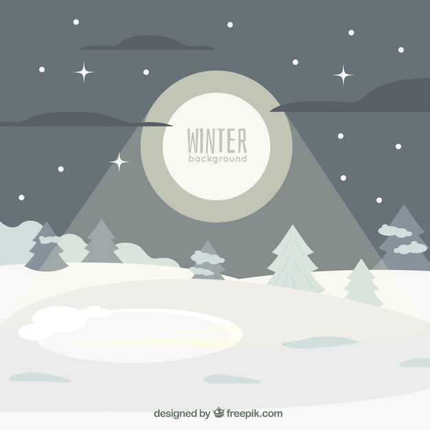 Snowy night landscape background