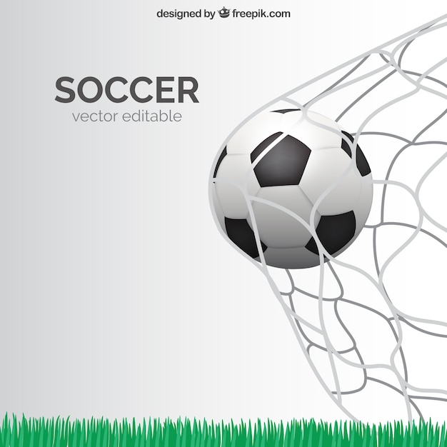 Soccer Vectors, Photos And Psd Files | Free Download