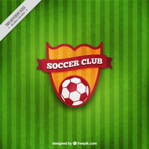 Soccer shield on a green background