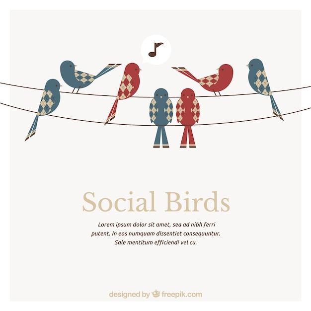Social birds template Free Vector