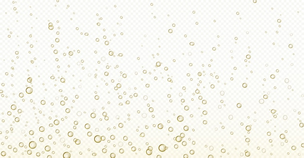 Soda bubbles, champagne, water or oxygen air fizz Free Vector
