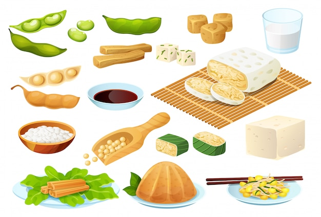 Soy food set  on white, vegetarian protein meal, healthy diet collection,  illustration Premium Vector