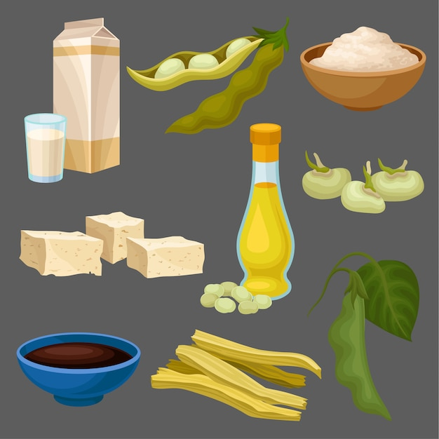 Soya food products set, milk, oil, sauce, tofu, bean, flour, meat, healthy diet, organic vegetarian food  illustration Premium Vector