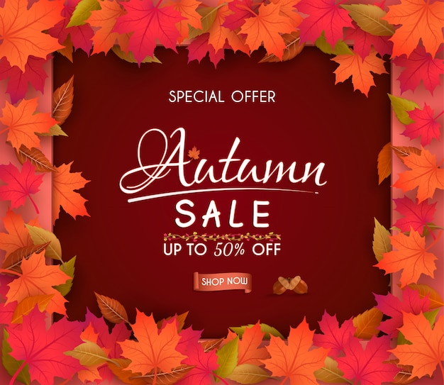 Special offer autumn  sale banner design. with colorful seasonal fall leaves. Premium Vector
