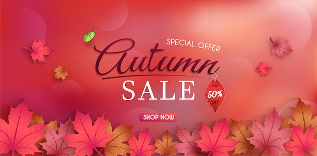 Special offer autumn. and sales banner design. with colorful seasonal fall leaves. Premium Vector