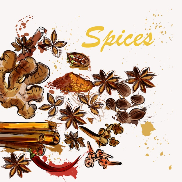 Spices background design Free Vector