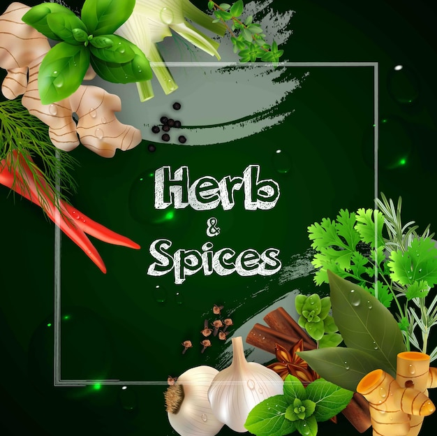 Spices and herbs on the green background Premium Vector