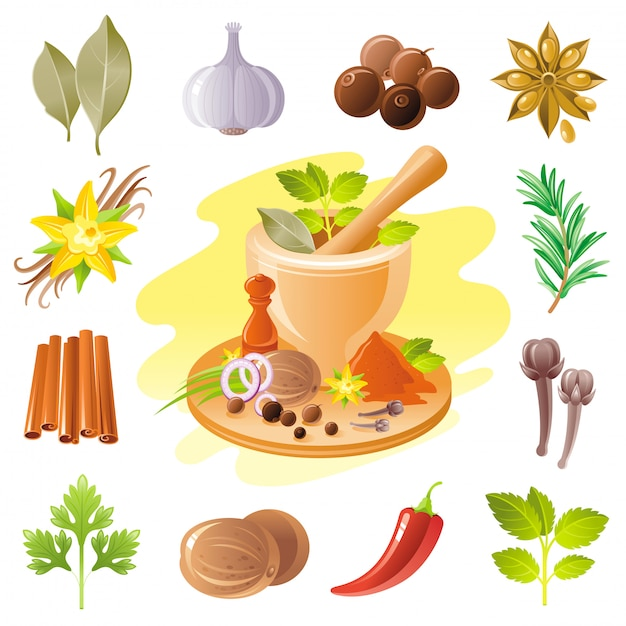 Spices and herbs icon set. food seasoning illustration. Premium Vector