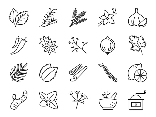 Spices and herbs icon set. Premium Vector