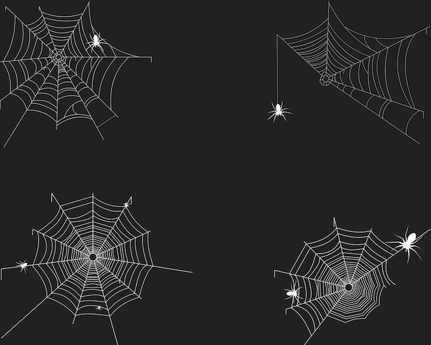 Spider's web on white Premium Vector