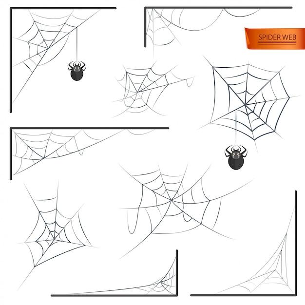 Spider web monochrome Premium Vector