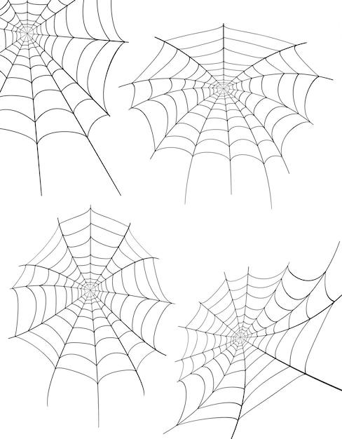 Spider web stock vector illustration Premium Vector