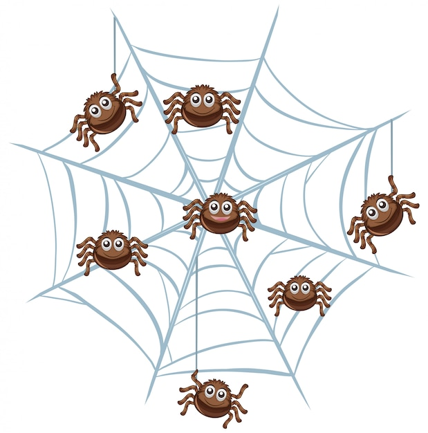 Spider in a web on white Free Vector