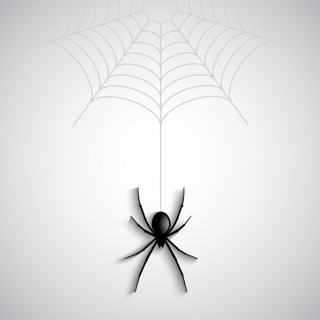 A spider on a white background Free Vector