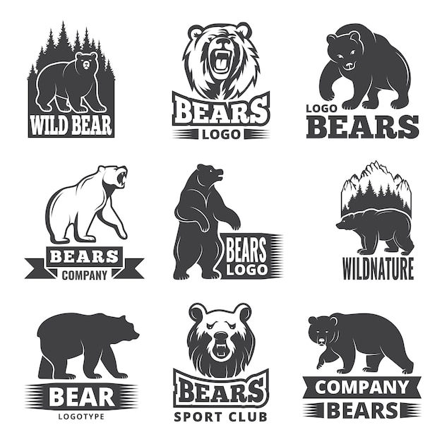 Sport labels with illustrations of animals. pictures of bears for logo design Premium Vector