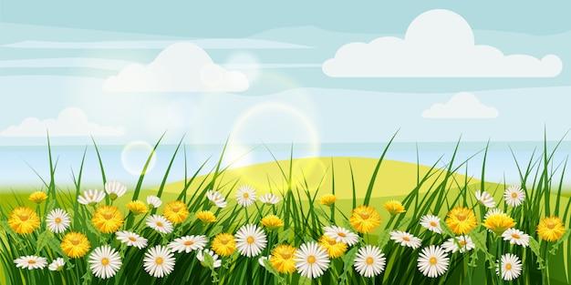 Весенние красивые пейзажи, поля, цветы ромашки, одуванчики, облака Premium векторы
