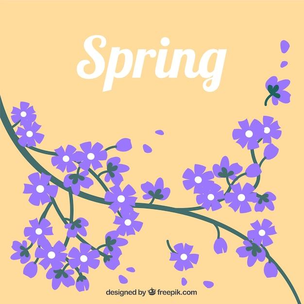 Spring flowers in purple color