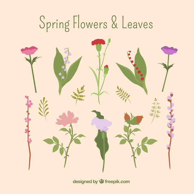 Spring flowers and leaves Free Vector