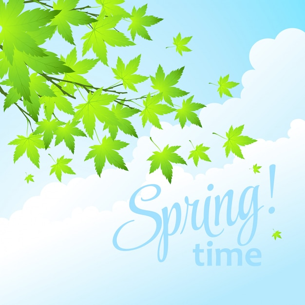 Spring fresh green leaves. Premium Vector