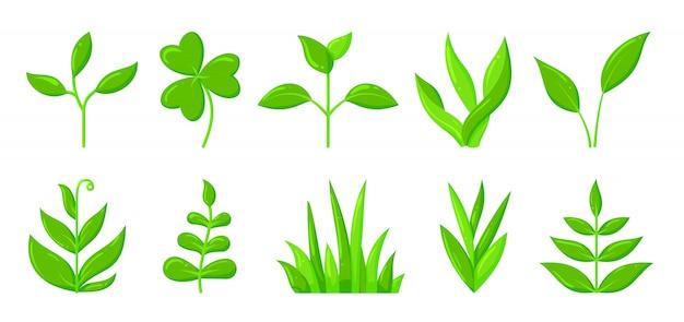 Spring green grass sprout plant flat cartoon icon set, organic seedling sapling growing. Premium Vector