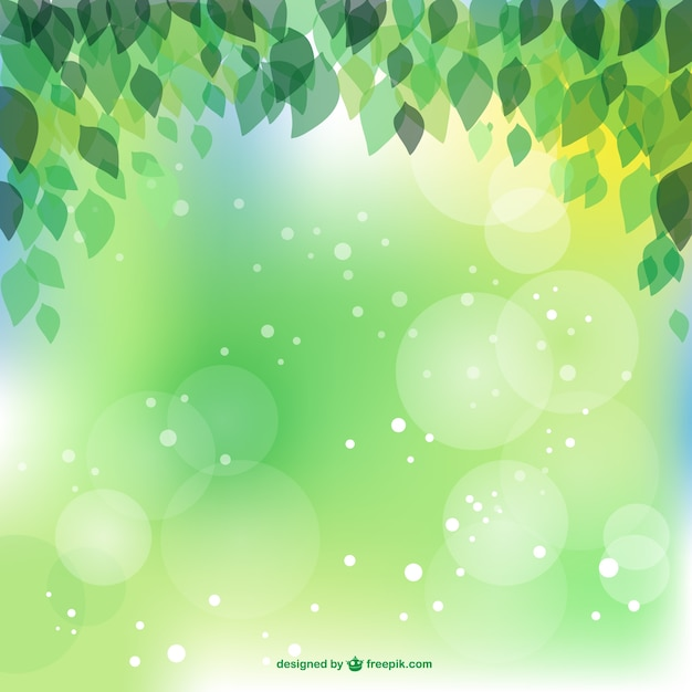 Spring background with leaves Vector   Free Download