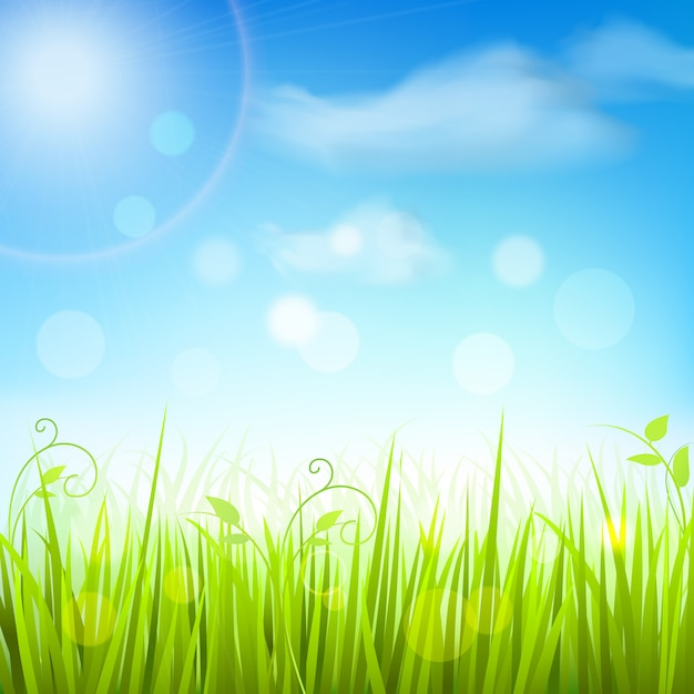 Spring meadow grass blue sky background Free Vector
