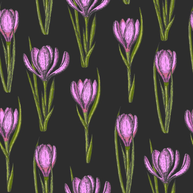 Spring seamless pattern with hand drawn flowers Premium Vector