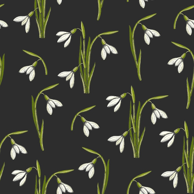 Spring seamless pattern with hand drawn snowdrops Premium Vector