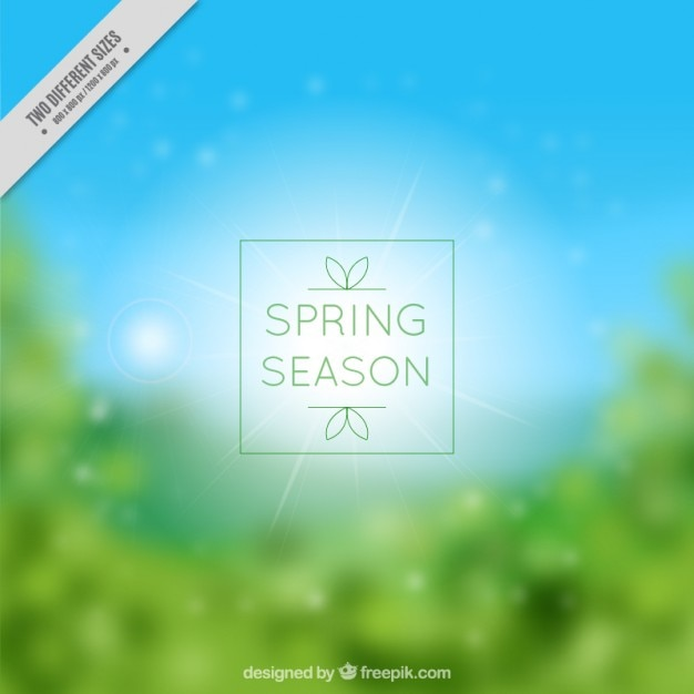 Spring season blurred background