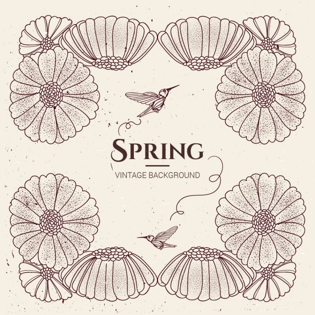 Springtime background with flowers and humming birds Free Vector